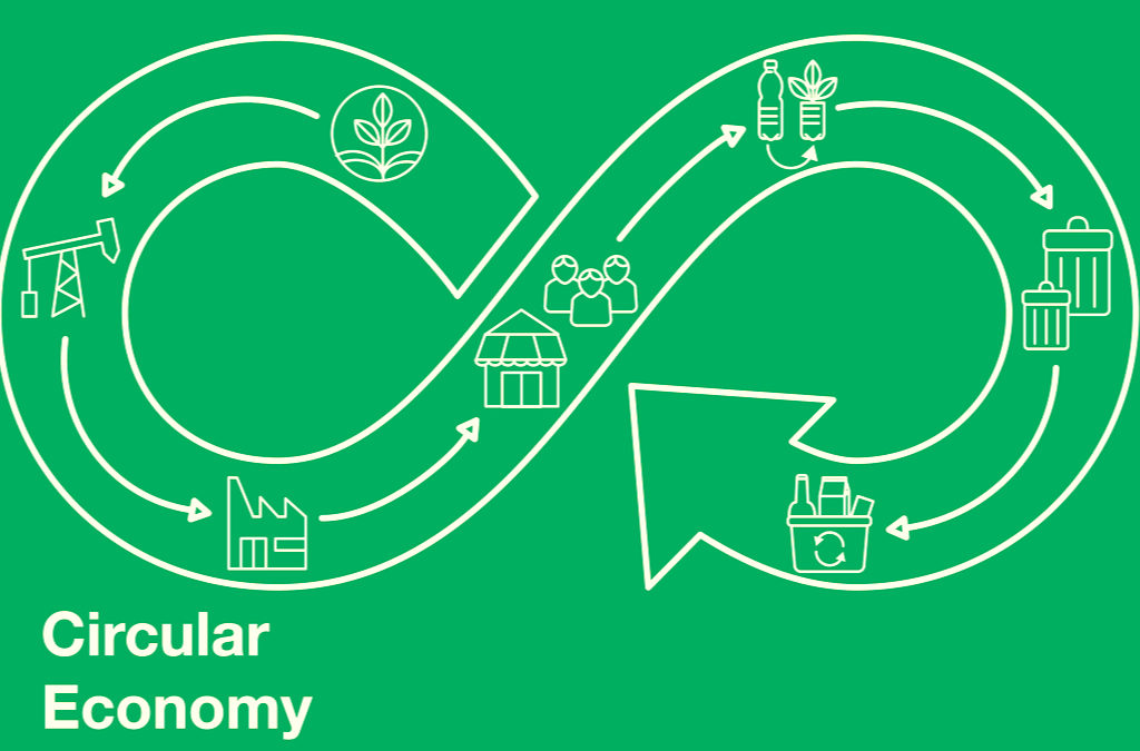 What are the Principles of the Circular Economy?
